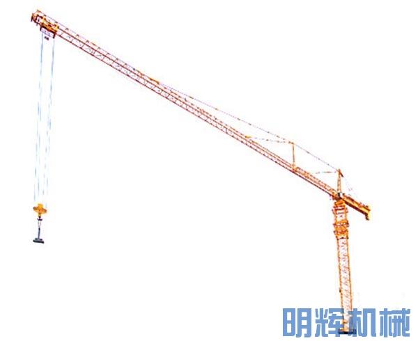 中联重科D1250-80塔式起重机